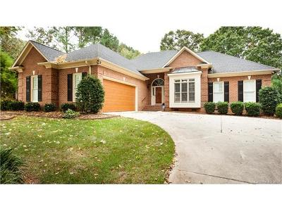 Cornelius Single Family Home For Sale: 7626 Vistaview Drive