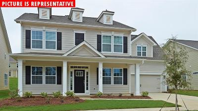 Huntersville Single Family Home For Sale: 10414 Barnmore Drive #32