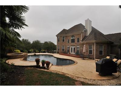 Fort Mill Single Family Home For Sale: 503 Zackary Lane