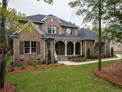 Charlotte Single Family Home For Sale: 16108 Alsace Drive