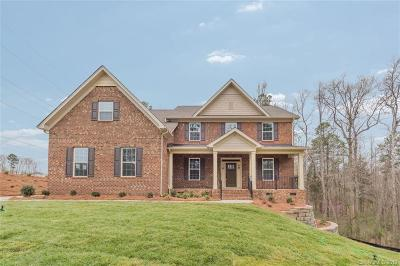 Clover, Lake Wylie Single Family Home For Sale: 381 Swift Creek Cove #001