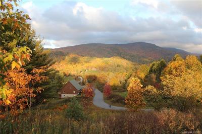 Avery County Single Family Home For Sale: 246 Fall Creek Meadows Lane