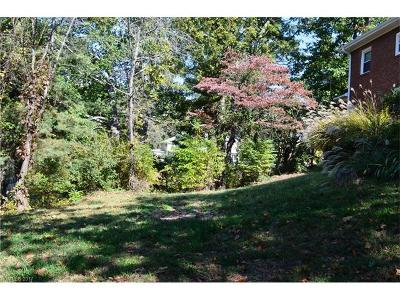 Residential Lots & Land For Sale: 21 White Fawn Drive #Lot 1