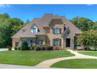 Iredell County Single Family Home For Sale: 1469 Shinnville Road