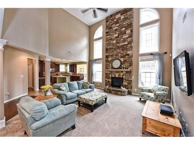 Single Family Home For Sale: 321 Woodward Ridge Drive
