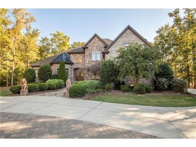 Matthews Single Family Home For Sale: 204 Chaucer Lane