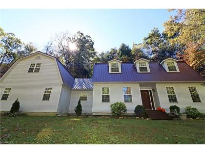 Transylvania County Single Family Home For Sale: 94 Paradise Cove Road