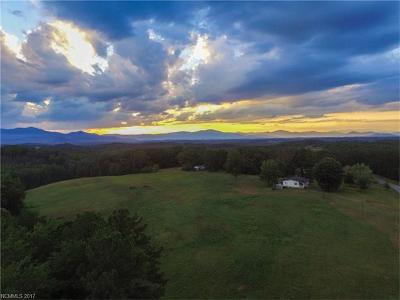 Tryon Residential Lots & Land For Sale: 1029 Turner Road