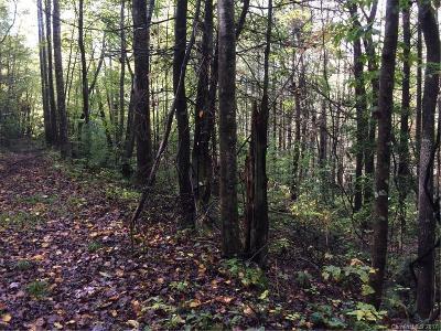 Bat Cave, Black Mountain, Chimney Rock, Columbus, Gerton, Lake Lure, Mill Spring, Rutherfordton, Saluda, Tryon, Union Mills Residential Lots & Land For Sale: Hwy 9 Highway