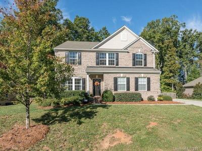 Lake Wylie Single Family Home For Sale: 795 Virginia Pine Lane