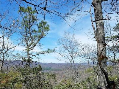 Bryson City Residential Lots & Land For Sale: Hwy 28 Highway S