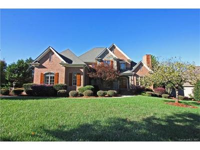 Weddington Single Family Home For Sale: 4028 Blossom Hill Drive