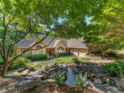Hendersonville Single Family Home For Sale: 127 Chattooga Run