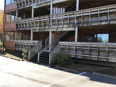 Transylvania County Condo/Townhouse For Sale: 157 Toxaway Views Drive #801