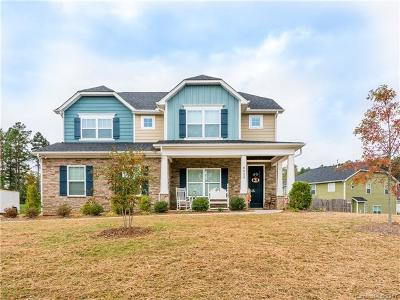 Mint Hill Single Family Home For Sale: 8529 Olde Stonegate Lane