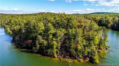 Alexander County, Burke County, Caldwell County, Ashe County, Avery County, Watauga County Residential Lots & Land For Sale: 1255 Heron Point Drive #2