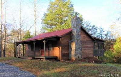 Bat Cave, Black Mountain, Chimney Rock, Lake Lure, Rutherfordton, Union Mills, Mill Spring, Columbus, Tryon, Saluda Single Family Home For Sale: 3991 Bills Creek Road