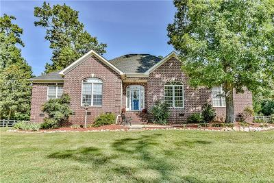 Fort Mill Single Family Home For Sale: 2354 Vineyard Road