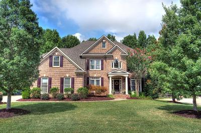 Fort Mill Single Family Home Under Contract-Show: 22048 Preswick Drive