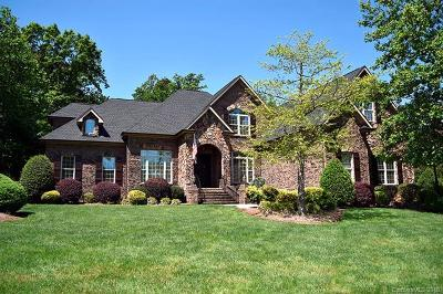Fort Mill Single Family Home For Sale: 422 Langston Place Drive