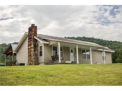 Candler Multi Family Home For Sale: 171 & 169 Medford Branch Road