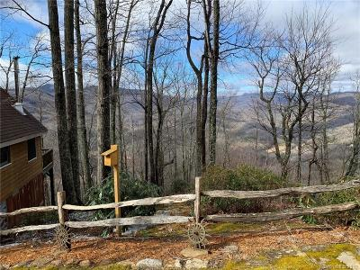 Bat Cave, Black Mountain, Chimney Rock, Columbus, Gerton, Lake Lure, Mill Spring, Rutherfordton, Saluda, Tryon, Union Mills Single Family Home For Sale: 19 Kate Mountain Road