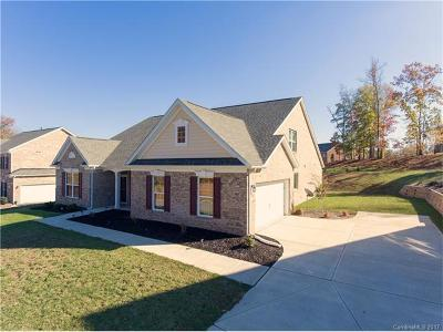 Rock Hill Single Family Home For Sale: 1672 Williamsburg Drive