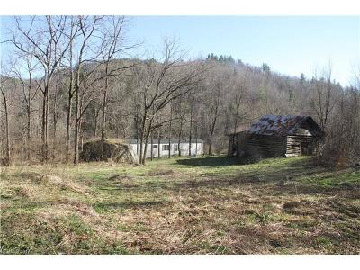 Hot Springs Single Family Home For Sale: 4208 Meadow Fork Road