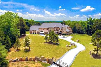 Cabarrus County Single Family Home For Sale: 9385 Greathorn Lane