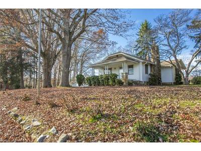 Hendersonville Single Family Home For Sale: 153 Queen Street