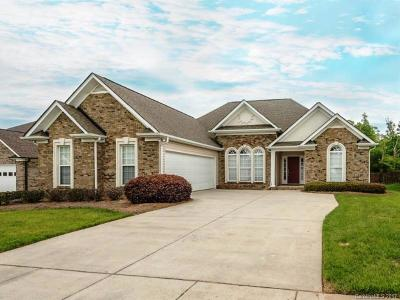 Stanly County Single Family Home Under Contract-Show: 256 Lagoda Drive