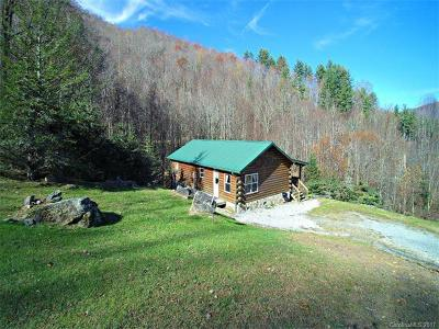Bryson City Single Family Home For Sale: 97 Deep Gully Road