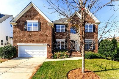 Mecklenburg County Single Family Home For Sale: 6519 Ballybay Drive