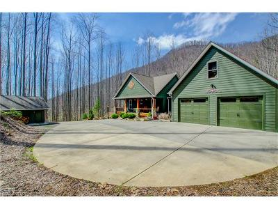 Single Family Home For Sale: 333 Martins Creek Road