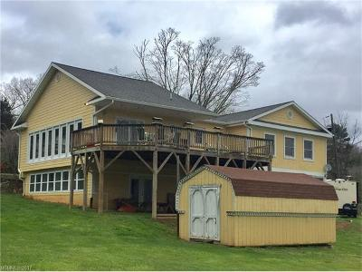 Weaverville Single Family Home For Sale: 141 Reems Creek Road