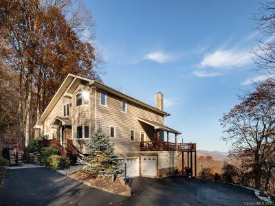 Maggie Valley Single Family Home For Sale: 242 Lion Heart Lane