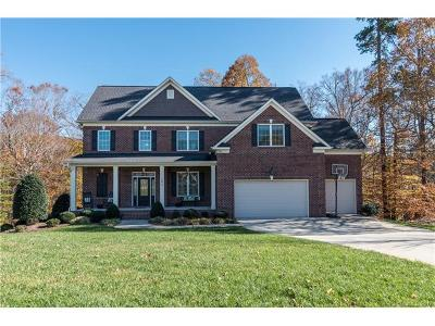 Statesville Single Family Home For Sale: 143 E Tattersall Drive
