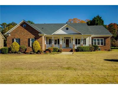 Mint Hill Single Family Home For Sale: 13709 Jonathans Ridge Road