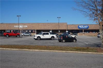Candler NC Commercial For Sale: $13,950,000