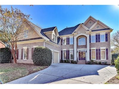 Charlotte Single Family Home For Sale: 16739 Ansley Walk Lane