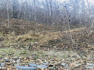Arden Residential Lots & Land For Sale: 23 Soapstone Creek Drive #23