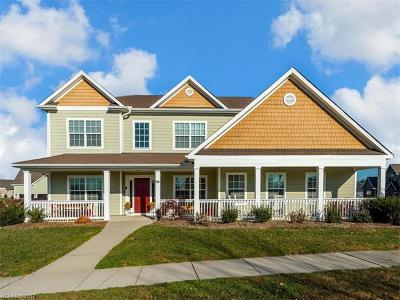 Mills River Single Family Home For Sale: 98 Birchbark Drive #75