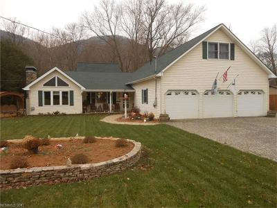 Maggie Valley Single Family Home For Sale: 1075 Moody Farm Road