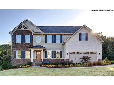 Fort Mill Single Family Home For Sale: 1620 Callahan Road #162