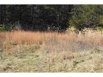 Weaverville Residential Lots & Land For Sale: Chandler Branch Road