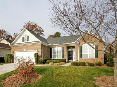 Fort Mill Single Family Home For Sale: 786 Platinum Drive #406