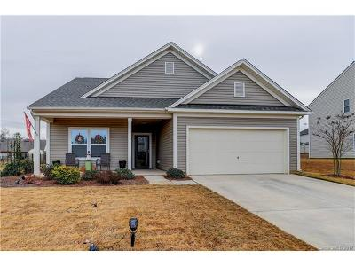 Statesville Single Family Home For Sale: 116 Water Ski Drive