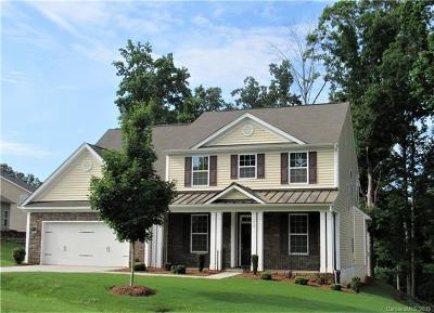 Lake Wylie Single Family Home For Sale: 917 Autumn Glen Court
