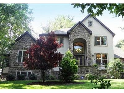 Mills River Single Family Home For Sale: 793 High Vista Drive