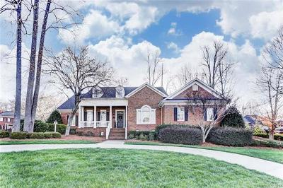 Gastonia Single Family Home For Sale: 3716 Stoneycreek Court